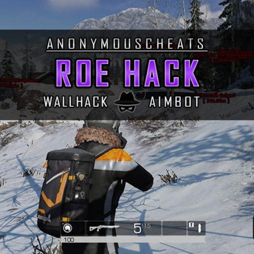 ROE hack with aimbot and wallhack