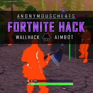 fortnite hacks with aimbot and wallhack